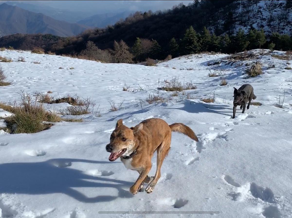 Offroad auf Schnee und Eis
