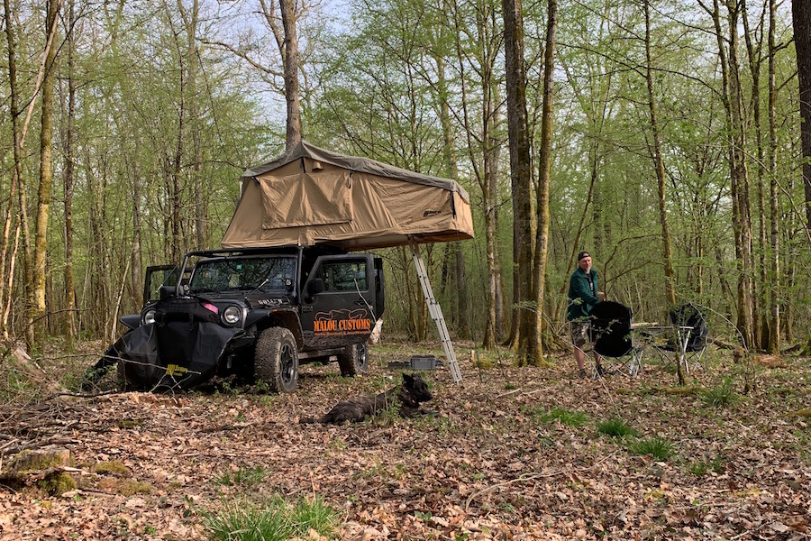 Offroad trip to France, beautiful camping spot in the middle of the forest in the Vosges.