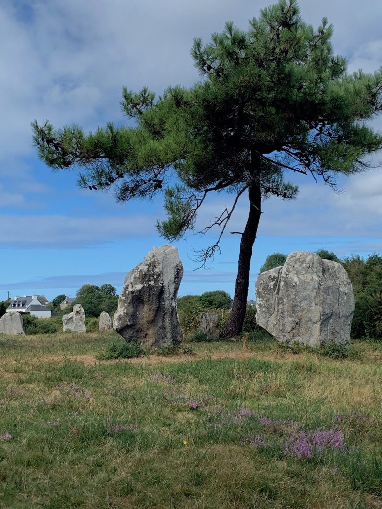 Dolmens and menhirs of Brittany: Quadrilatère of Crucuno
